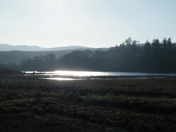 Nouvel An en Irlande ; ambiance festive et esprit cottage 19