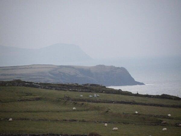 Nouvel An en Irlande ; ambiance festive et esprit cottage 56